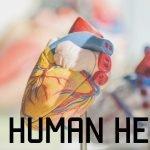 Anatomy Monday: Your Heart